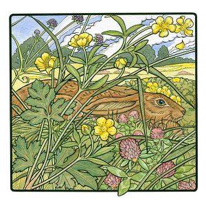 Hare in Clover davidhallartist.info