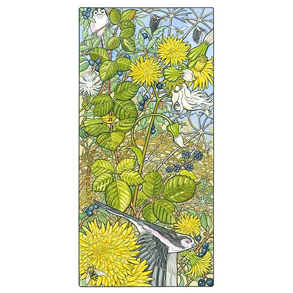 Sow Thistle and Long Tailed Tits davidhallartist.info