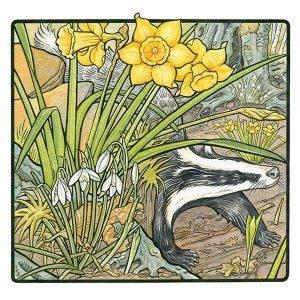 Daffodils & Snowdrops with Badger davidhallartist.info