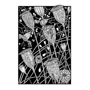 poppy heads black & white Art davidhallartist.info