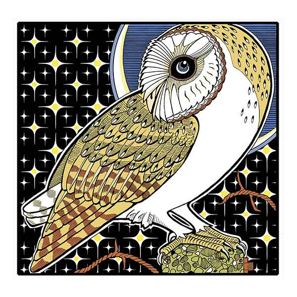 Barn Owl 1 davidhallartist.info