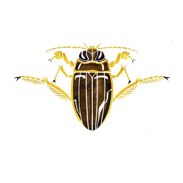 Great Diving Beetle David Hall davidhallartist.info