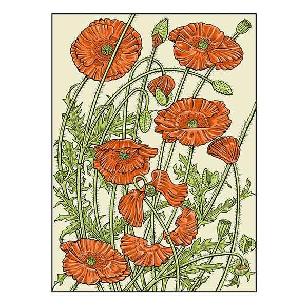 Poppies on primrose colored background davidhallartist.info