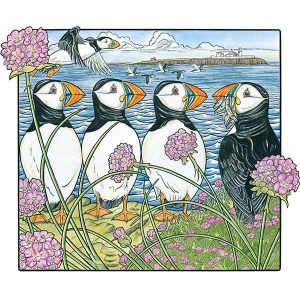 David Hall Artist Sea Parrots & Pinks
