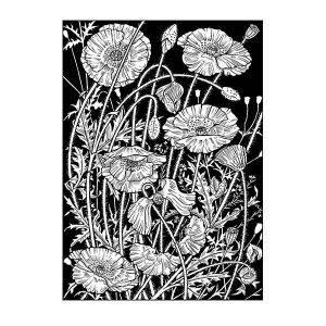 David Hall Artist Black and White Poppies davidhallartist.info