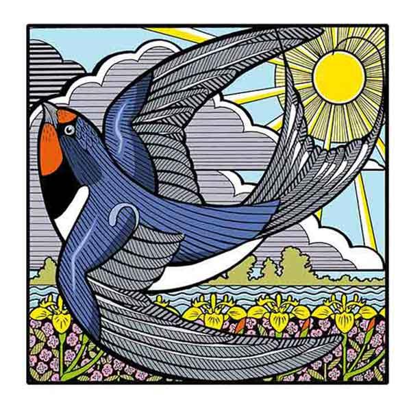 Swallow in flight davidhallartist.info